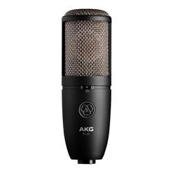 P420, Dual-Large-Diaphragm True Condenser Mic
