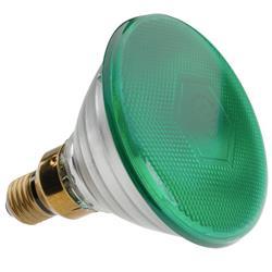 (Z4) 230V, 80W Par38 för Par-46, Grön