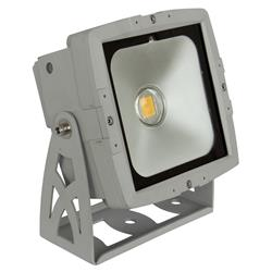 LED LDP-COBWASH 50WW