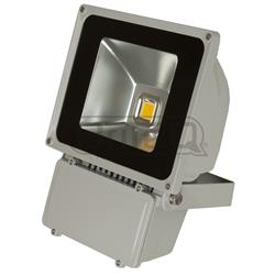 LED LDP-FLOOD80-WW